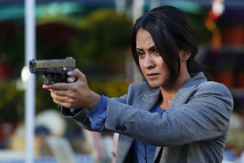 Parminder Nagra 바탕화면 titled Parminder Nagra as Meera Malik in The Blacklist