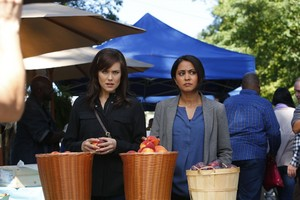 Parminder Nagra as Meera Malik in The Blacklist