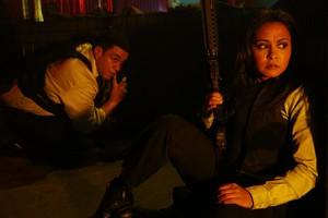 Parminder Nagra as Meera Malik in The Blacklist