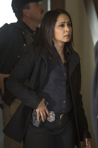 Parminder Nagra 바탕화면 entitled Parminder Nagra as Meera Malik in The Blacklist
