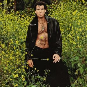 Dylan Brosnan   IMG Models