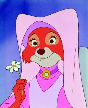 Robin capuche, hotte
