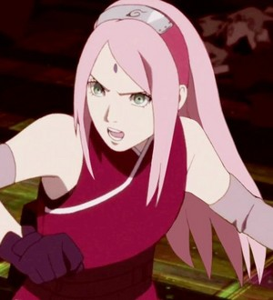 Sakura with long hair