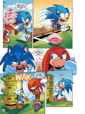 Sonic 18