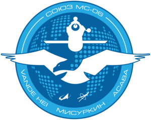 Soyuz MS 06 Mission Patch