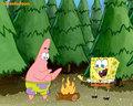 spongebob-squarepants - Spongebob and Patrick in the forest wallpaper wallpaper