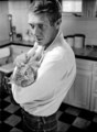 Steve Mcqueen And His Cat - classic-movies photo