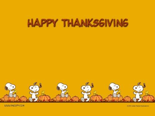 Peanuts wallpaper entitled Thanksgiving