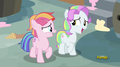 Toola-Roola and Coconut Cream - my-little-pony-friendship-is-magic photo