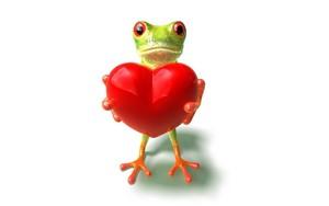 puno Frog