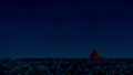 Under the Stars  - the-lion-king wallpaper