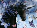 Unicorn - fantasy wallpaper