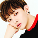WANNA ONE Icons  - kpop icon