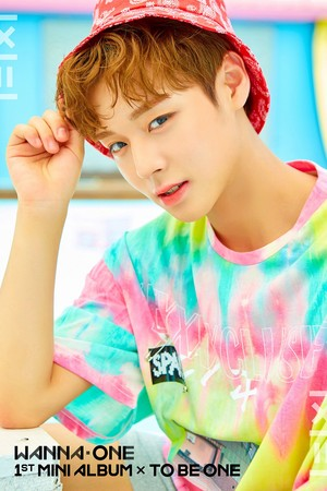 WANNA ONE Teaser immagini for Debut Album 1X1=1(TO BE ONE) (Pink Vers.)