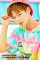 WANNA ONE Teaser imagens for Debut Album 1X1=1(TO BE ONE) (Pink Vers.)