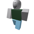 dont send friend request - roblox photo