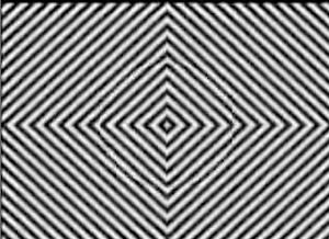 illusion 81