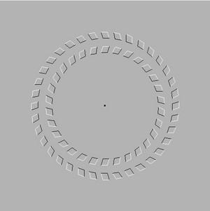 illusion 86