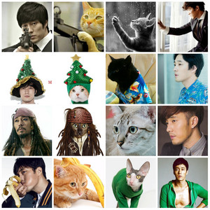 master's sun so ji sub vs cat