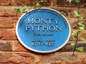 monty питон, python plac