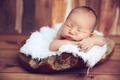 newborn 87 - dphoto-folio photo
