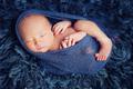 newborn 92 - dphoto-folio photo