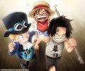 *Ace Sabo Luffy* - anime photo