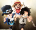 *Ace Sabo Luffy* - monkey-d-luffy photo