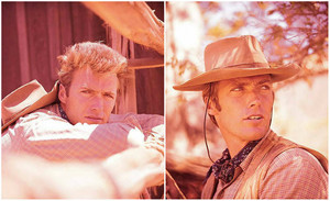 Clint Eastwood Rawhide (early 1960)