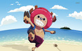 *Tony Tony Chopper* - one-piece photo