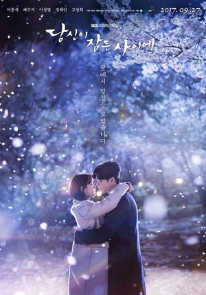 'While te Were Sleeping' poster