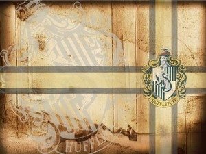 443ff736ebe4347a5f35378fdf49cb29 harry potter things hufflepuff pride