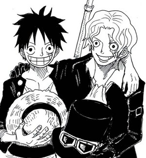 luffy and sabo