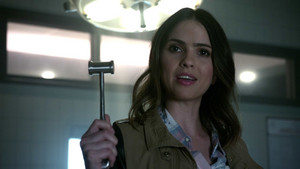 6x18 ~ Genotype ~ Malia