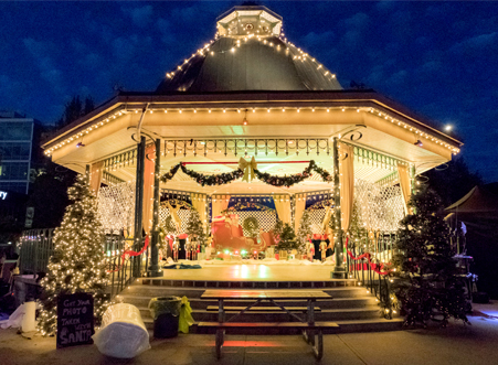 Bramble House Christmas.A Bramble House Christmas Hallmark Movies Photo 40734156