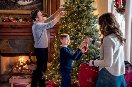 Bramble House Christmas.A Bramble House Christmas Hallmark Movies Photo 40734166