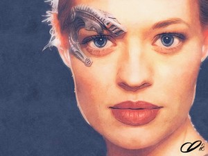 Adam Darr Seven of Nine