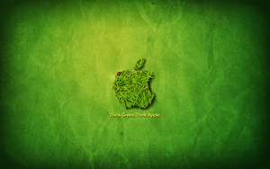 epal, apple Think Green Background HD Desktop kertas dinding