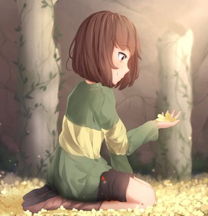 Chara admires the Golden 花