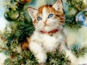 Рождество Cat Обои