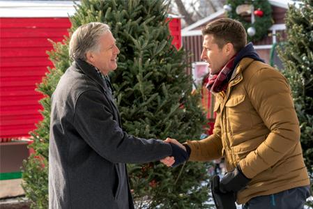 Christmas Festival Of Ice.Christmas Festival Of Ice Hallmark Movies Photo 40734306