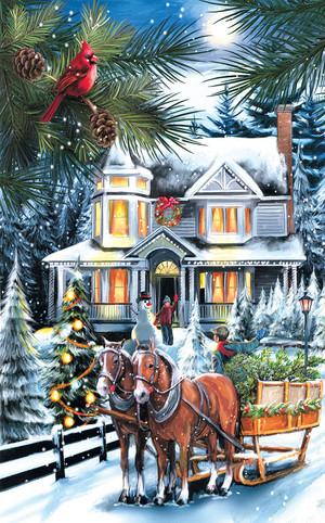 Рождество Scenes