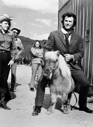 Clint Eastwood 'rides' a miniature টাট্টু on the set of Joe Kidd (1972)