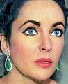 Dame Elizabeth Taylor  - elizabeth-taylor photo