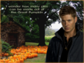 Dean's Halloween thoughts (1024x768) - supernatural wallpaper