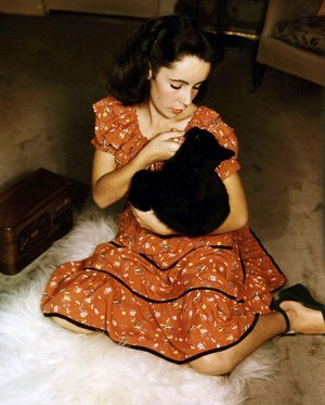 Elizabeth And Her Kitten