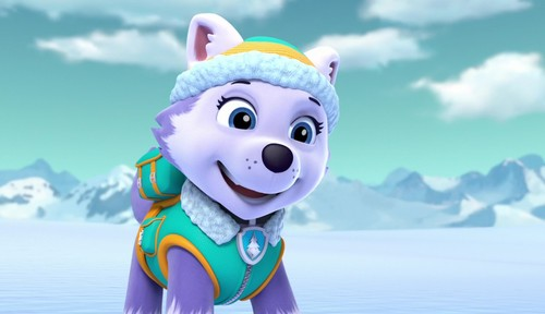 What Is The New Paw Patrol Dog Called