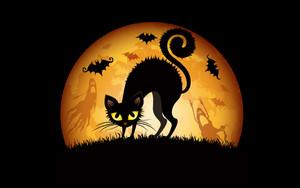 Happy Halloween!! 🎃🎃
