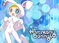 Harmony Bunny!!!