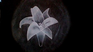I drawed this flower!